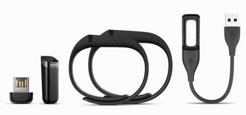 Flex-Fitbit-Pack