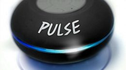 Pulse Shower speaker