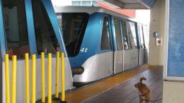 Miami-Dade public transport transit