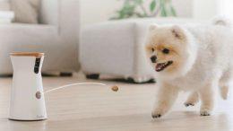 furbo distributeur de croquette connecté pour chien