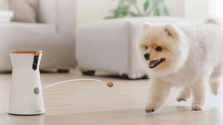 furbo l appareil friandise connect pour votre chien. Black Bedroom Furniture Sets. Home Design Ideas