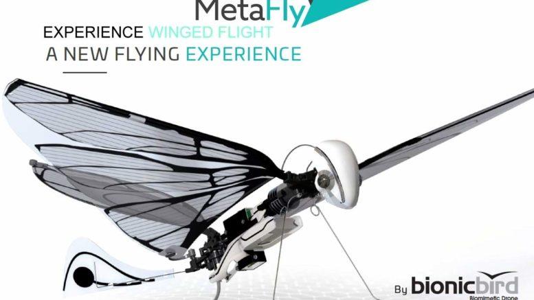 Metafly