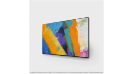 TV OLED LG OLED55GX6 2020