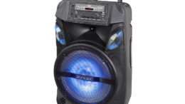 XFest Amplified Speaker 100W